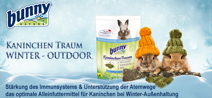 Bunny Winter-Outdoor