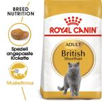 Royal Canin British Shorthair 34 | 2kg
