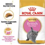 Royal Canin Kitten British Shorthair | 400g