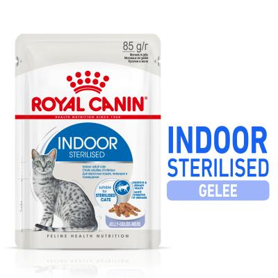 ROYAL CANIN INDOOR Sterilised in Gelee | 85 g