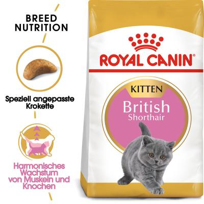 Royal Canin British Shorthair Kitten | 400g