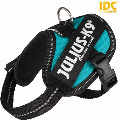 Trixie Julius-K9® IDC Powergeschirr, Baby 2/XS–S: 33–45 cm/18 mm, petrol