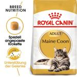 Royal Canin Maine Coon 31 | 4kg