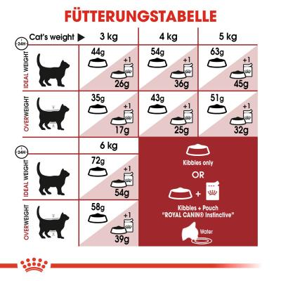 Sparpack! Royal Canin Fit 32 | 2 x 10kg