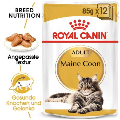 Sparpack! Royal Canin Maine Coon Adult in Soße | 12 x 85 g