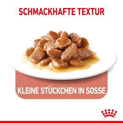 Sparpack! Royal Canin Appetite Control in Soße | 12 x 85 g