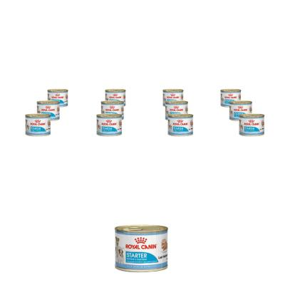 Sparpack! Royal Canin Starter Mousse 195g 12 x ...