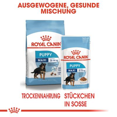 Sparpack! Royal Canin Maxi Puppy | 10 x 140 g