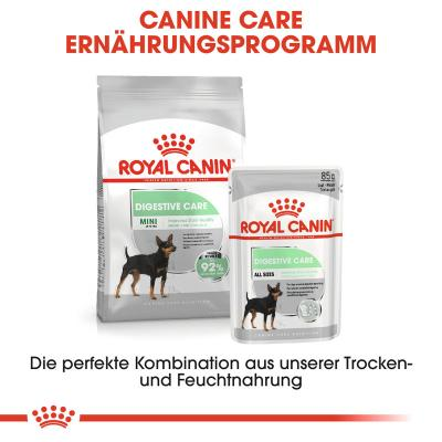 Sparpack! Royal Canin Digestive Care Mousse | 12 x 85 g
