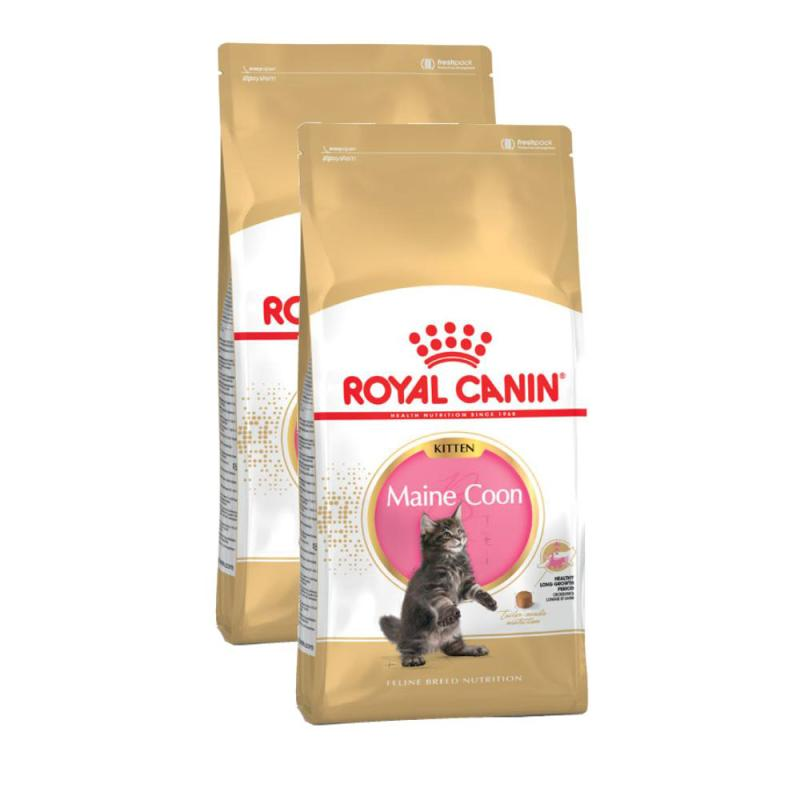 Sparpack! Royal Canin Kitten Maine Coon 36 | 2 x 10kg