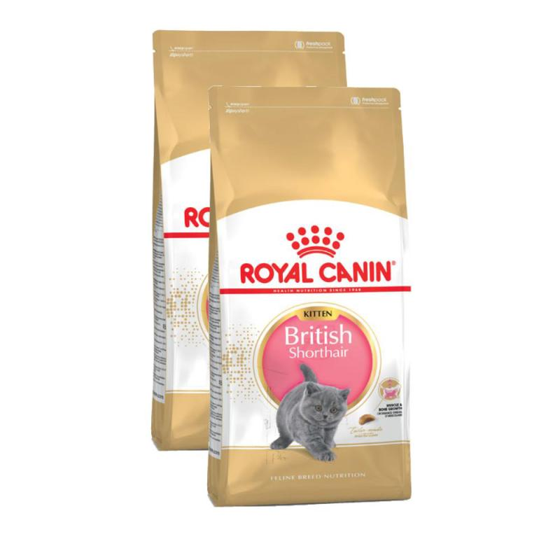 Sparpack! Royal Canin Kitten British Shorthair | 2 x 10kg
