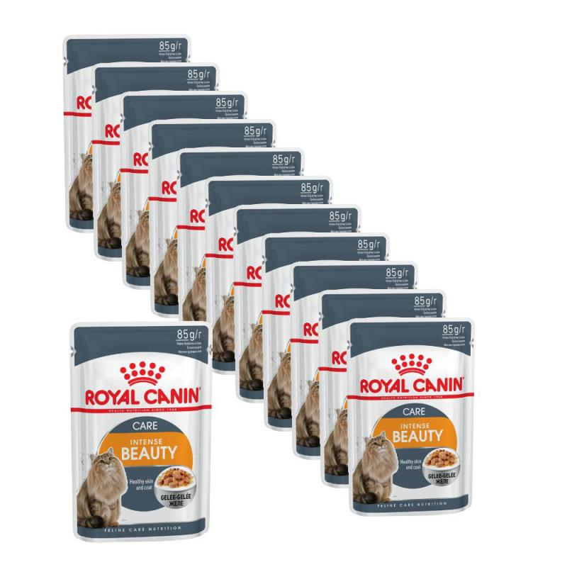 Maxipack Royal Canin Intense Beauty in Gelee | 85g 10 + 2 gratis