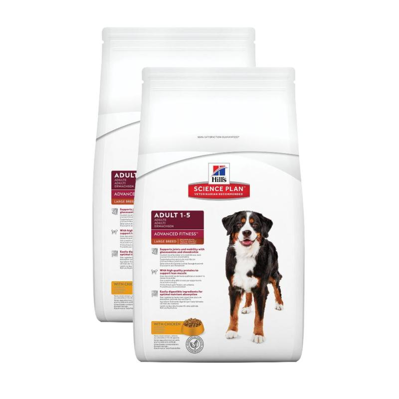 Sparpack! Hill's Canine Adult Large Breed | 2x12kg