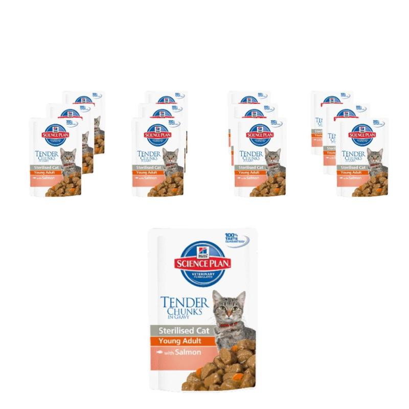 Sparpack! Hill's Sterilised Cat Young Adult Lachs | 12 x 85g